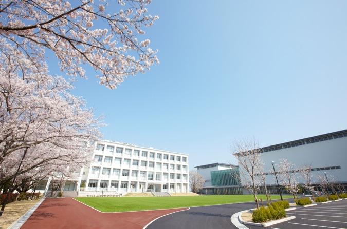 【芝生広場】桜並木と鮮やかな緑が美しい芝生広場。キャンパスの中心にあり、学生の憩いの場となっています。